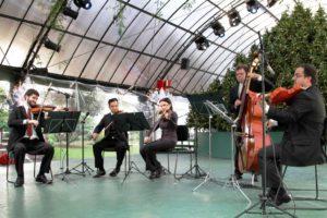 orquestra-de-violoes